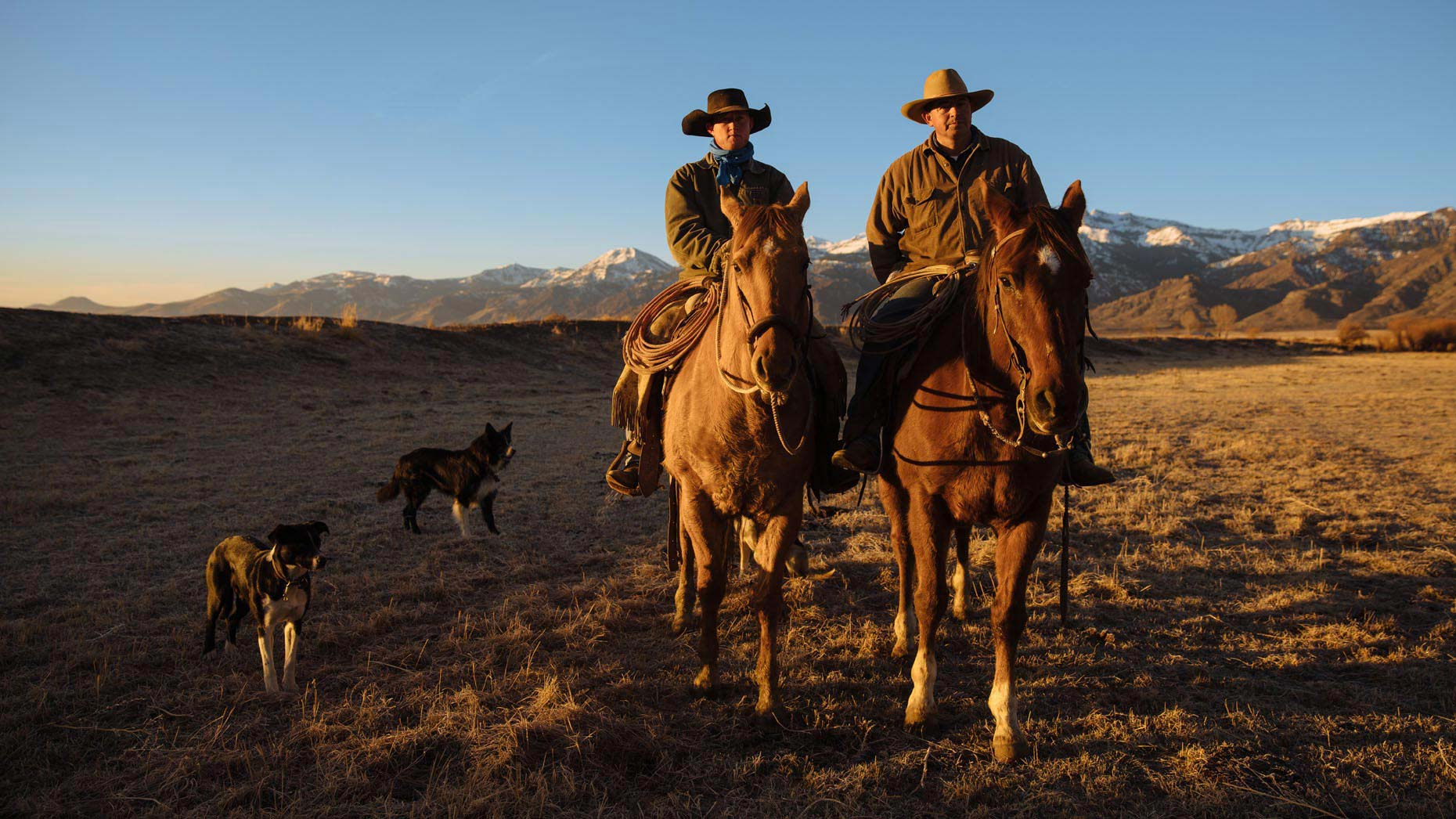 Ranchers on the lookout in the morning